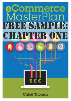 eCommerce MasterPlan: Your 5 Steps to Successful Online Selling Chapter 1 freebie